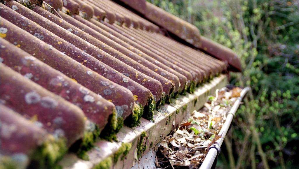 Dirty Roof Gutter