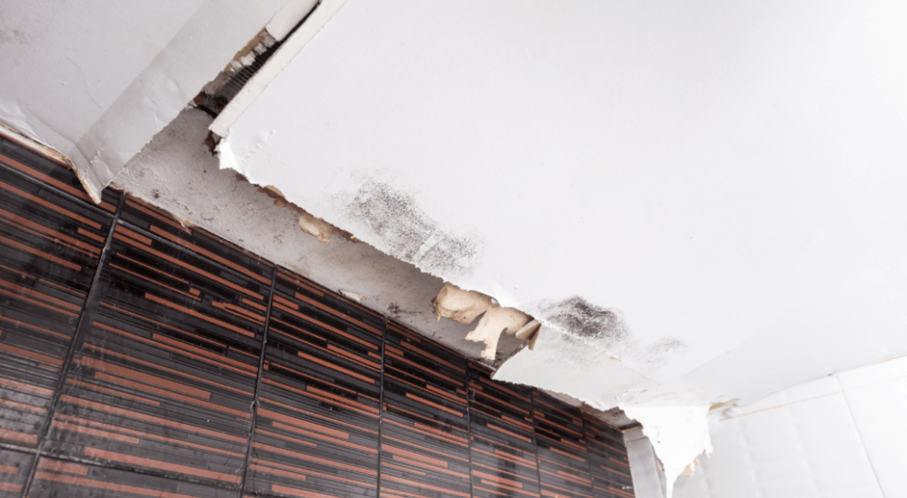 Will A Roof Leak Cause Mould?
